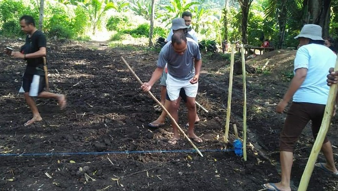 Bupati Alor Drs Amon Djobo mengisi kekosongan waktu berkunjung ke kebun saudara sepupunya Jhon L. Maro di kaki bukit Desa Lendola, belum lama ini. Di sana, Bupati (kedua kiri) melakukan penanaman Jagung Hibrida. (Sumber: FB Gabriel L. Tang).